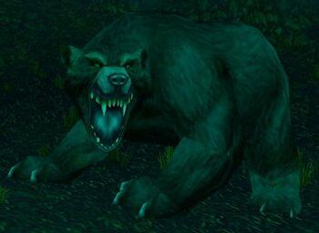 Great Bear Spirit