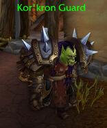3434Kor'kron Guard