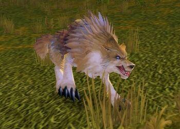 Prairie Wolf Alpha