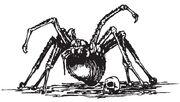 SpiderW1