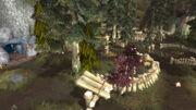 Blackwood Den from Cave (Cataclysm)
