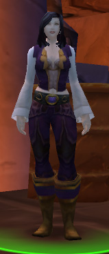 Stormwind Commendation Officer
