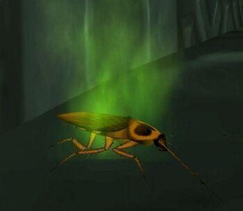 Plagued Roach