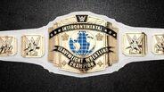 WWE IC Title 2013