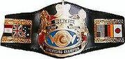 WCW Womens Championship