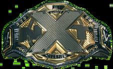 NXT Womens Championship 2017