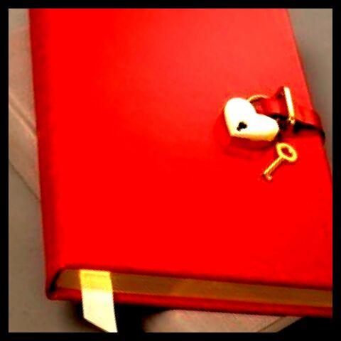 File:Diary1.jpg