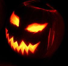 File:225px-Jack-o'-Lantern 2003-10-31.jpg