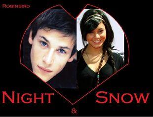 Night and Snow