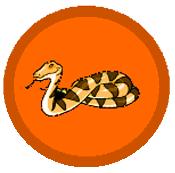 Węże1.png