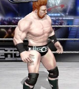 Sheamus primary attire