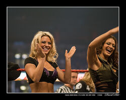 Divas WWE Monday Night Raw 800th Tampa