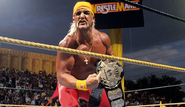 Hulk Hogan at Wrestlemania 9