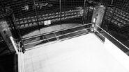 Elimination Chamber inside