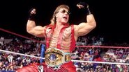 Shawn Michaels Intercontine