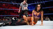 Nikki-Bella fighting Natatyla Elimination-Chamber