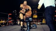 Goldberg grappling Hogan