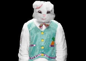 The Bunny pro