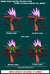 Ancient Dark Gaia Sprite Sheet