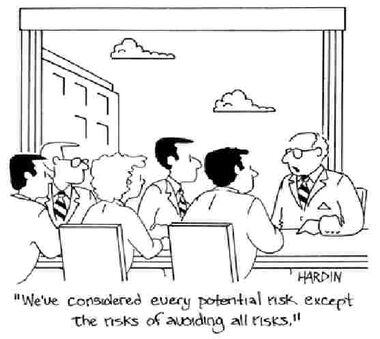 RiskNotTakingRisksCartoon