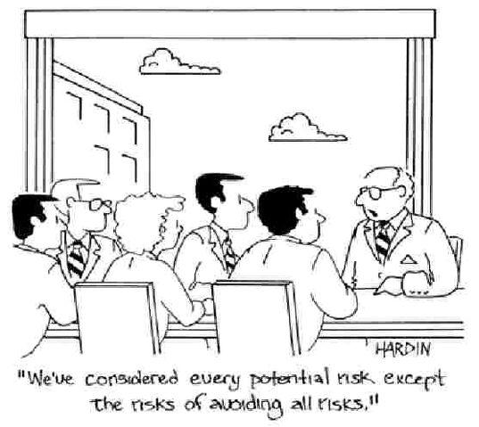 File:RiskNotTakingRisksCartoon.jpg