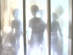 Grey Aliens Abduction Duane Barry