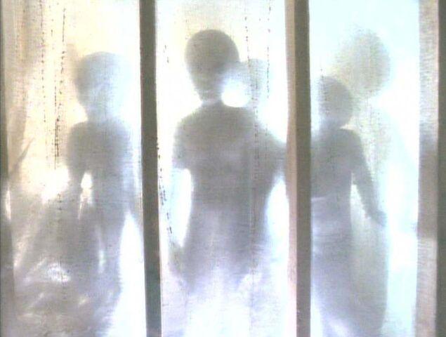 File:Grey Aliens Abduction Duane Barry.jpg