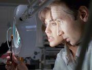 Mulder and Berenbaum inspect robotic cockroach