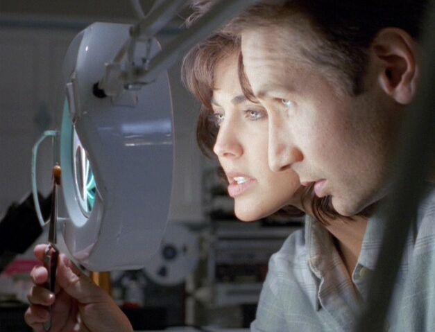 File:Mulder and Berenbaum inspect robotic cockroach.jpg