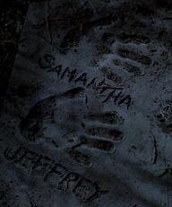 Handprints by Samantha Mulder and Jeffrey Spender