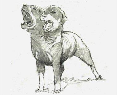 File:Two-headed dog (concept art).jpg
