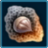 Lava Chestnut icon