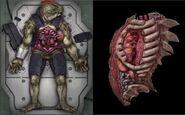Sebalian Autopsy