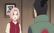 Naruto15312097