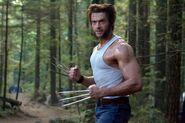 Wolverine301