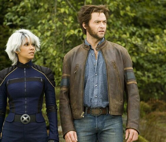 File:Storm and Wolverine.jpg