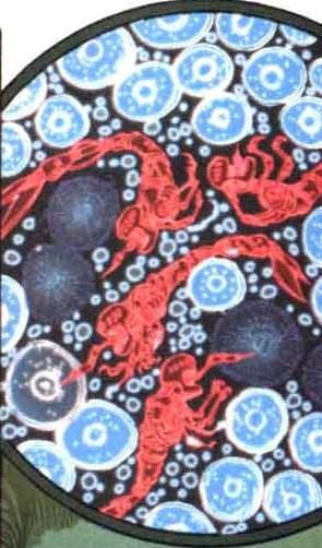 NanoSentinels