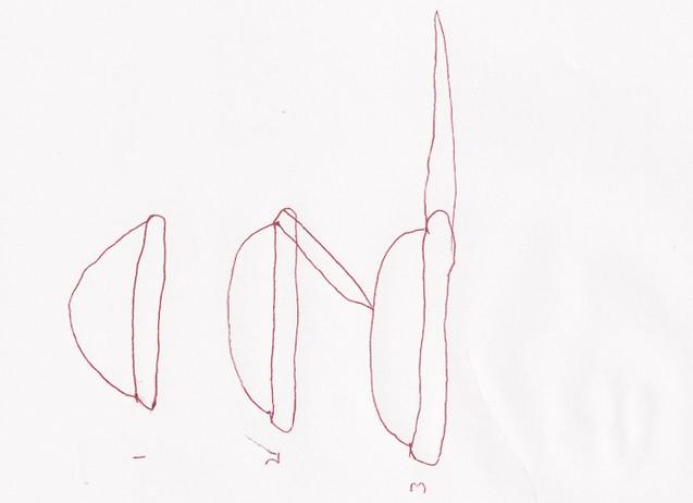 File:Wikia-Visualization-Main,xorn.png