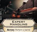 Expert Handling