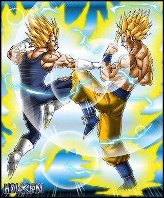Vegeta and Goku 3