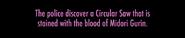 CircularSawDiscovered