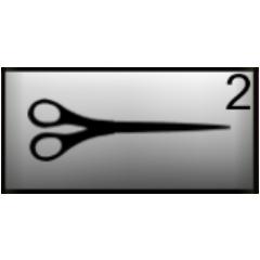 Scissors in inventory.
