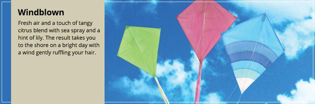 File:20150328 Windblown Frag Fam Banner yankeecandle com.jpg