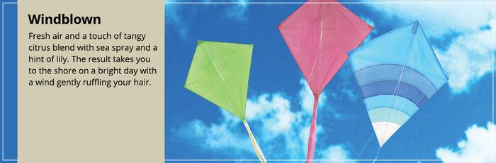 20150328 Windblown Frag Fam Banner yankeecandle com