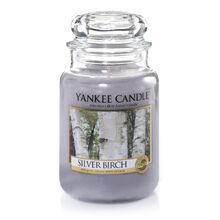 20150210 Silver Birch Lrg Jar yankeecandle com