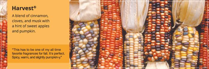 20150906 Harvest Banner yankeecandle com
