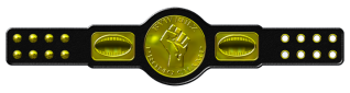 BYW Rulz Promo Championship