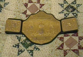 File:THW World Heavyweight Championship 3 Small.png