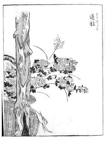 File:Sakabashira-sekien.jpg