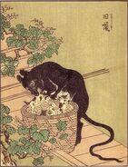 ShunsenKyuso